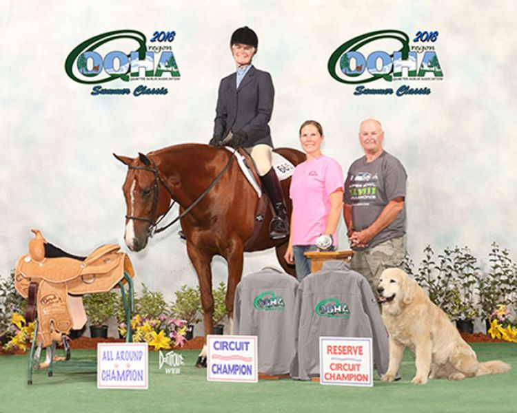 Good N Thirsty 2008 15.3 AQHA All Around Show Gelding For Sale